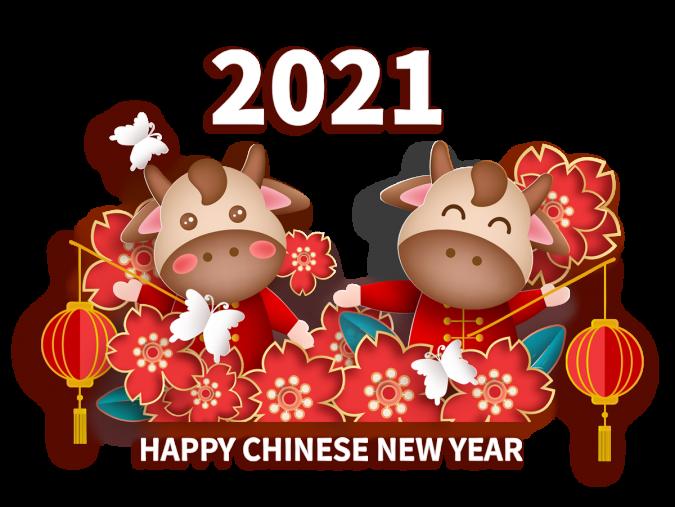 2021 CNY LOGO